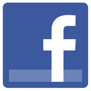 Facebook Interns Logo