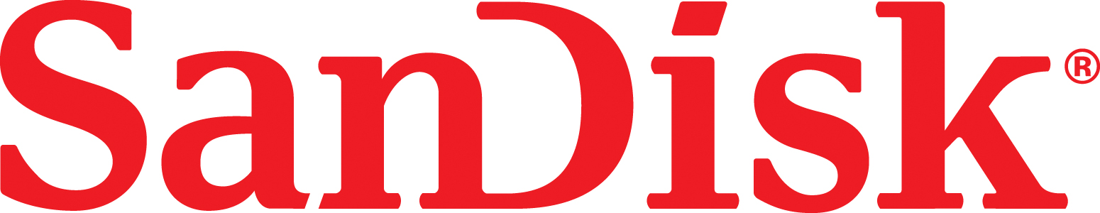 SanDisk Interns Logo