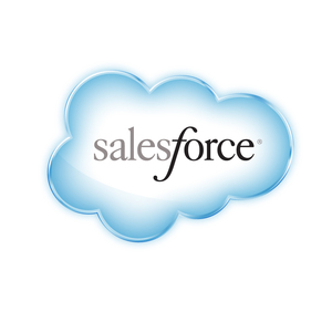 salesforce.com Interns Logo